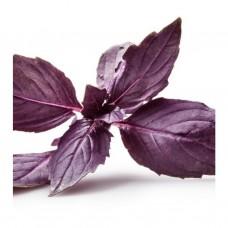 Гидролат Базилика, натуральная цветочная вода - тоник для лица, 150 мл.